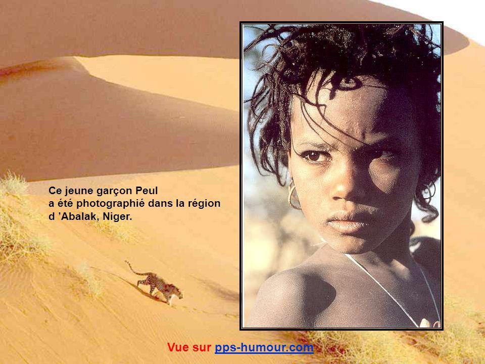 Ce jeune garçon nous lance un regard noir… Que craint-il de nous ? Ce sont de jeunes touaregs de la Montagne de l Aïr, au Niger. Vue sur pps-humour.co