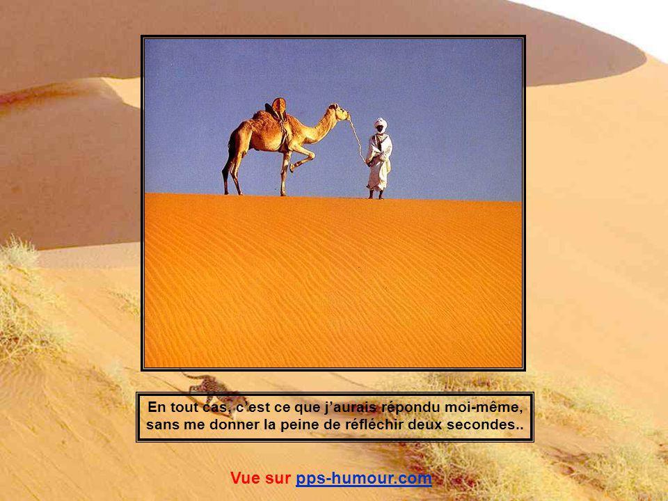 Si je vous demande : « Le Sahara, quest-ce que cela évoque, pour vous ? » Je pense que vous me répondrez : « Du sable, et puis du sable. Ah ! Oui ! Et