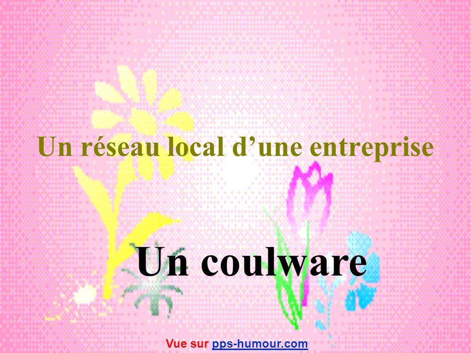 Un logiciel très compliqué Un assomware Vue sur pps-humour.compps-humour.com