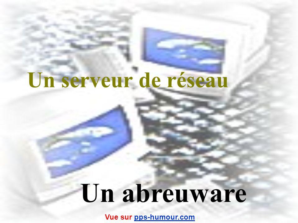 Un réseau local dune entreprise Un coulware Vue sur pps-humour.compps-humour.com