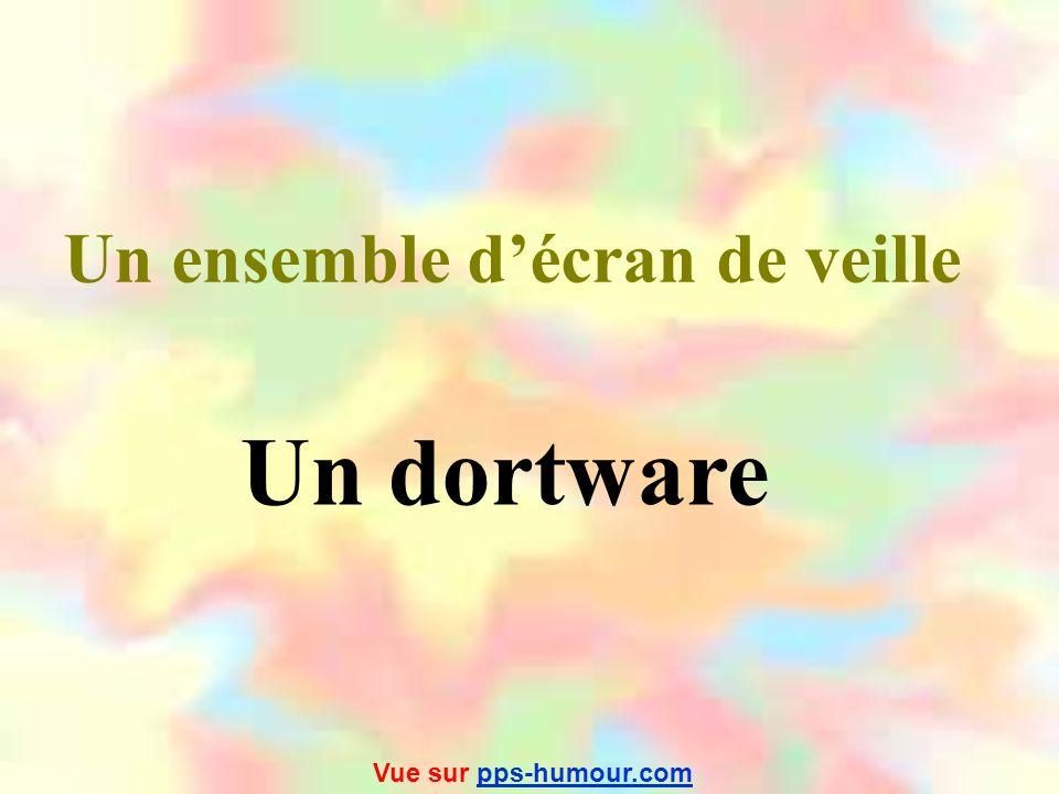 Les québecois ont jugé utile de compléter ce vocabulaire informatique En voici le résultat… Vue sur pps-humour.compps-humour.com