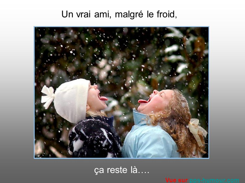 Un vrai ami, malgré le froid, ça reste là…. Vue sur pps-humour.compps-humour.com