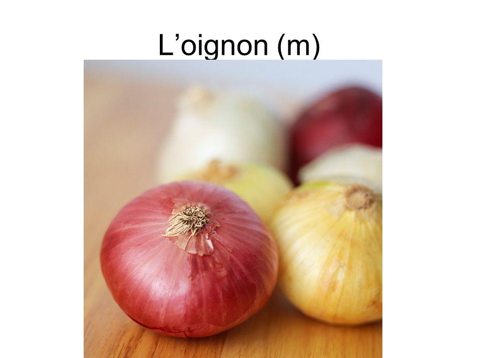 Loignon (m)