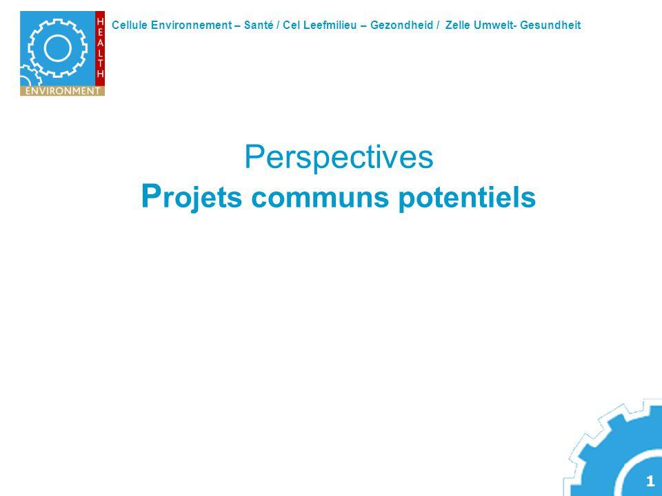 Cellule Environnement – Santé / Cel Leefmilieu – Gezondheid / Zelle Umwelt- Gesundheit 1 Perspectives P rojets communs potentiels