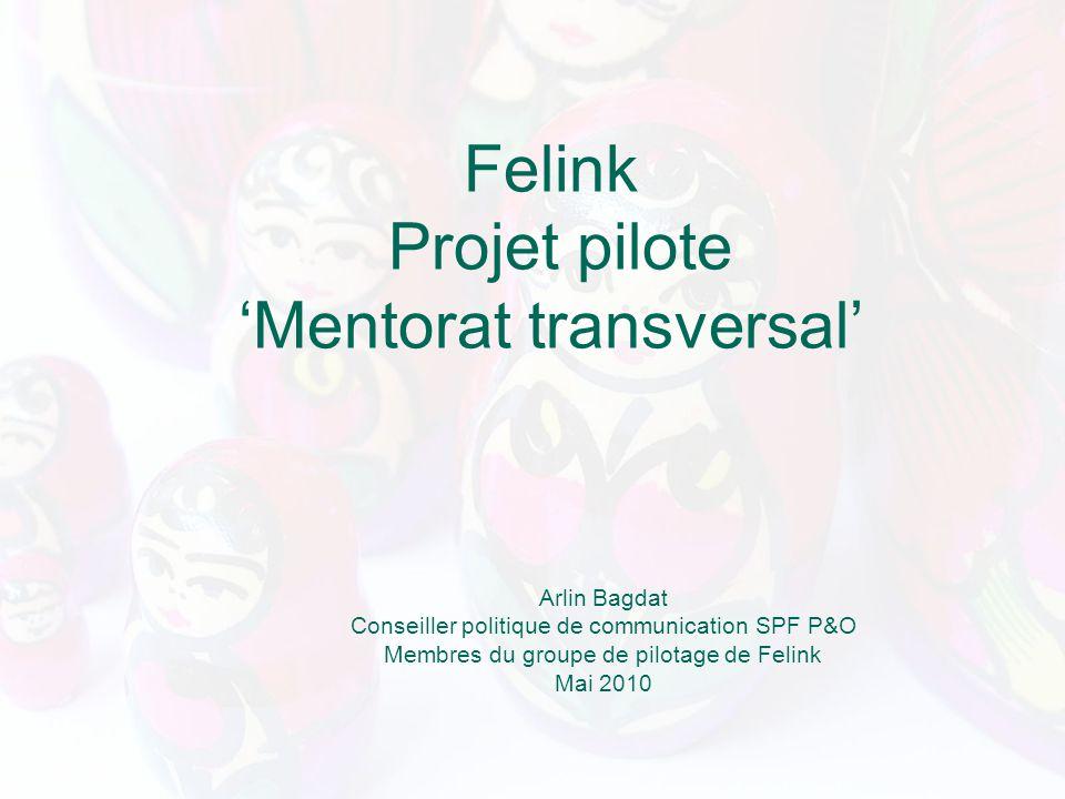 Felink Projet pilote Mentorat transversal Arlin Bagdat Conseiller politique de communication SPF P&O Membres du groupe de pilotage de Felink Mai 2010