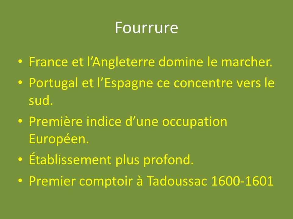 Fourrure France et lAngleterre domine le marcher. Portugal et lEspagne ce concentre vers le sud. Première indice dune occupation Européen. Établisseme