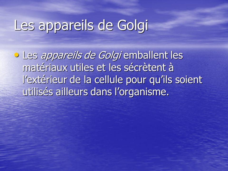 Les appareils de Golgi Les appareils de Golgi emballent les matériaux utiles et les sécrètent à lextérieur de la cellule pour quils soient utilisés ai