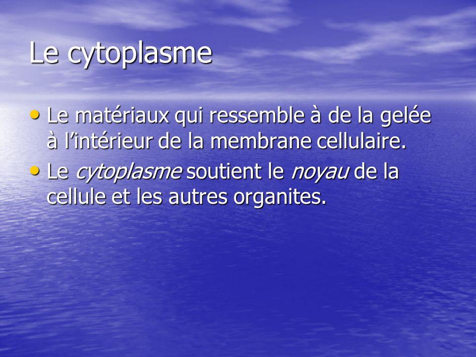 Le cytoplasme Le matériaux qui ressemble à de la gelée à lintérieur de la membrane cellulaire. Le matériaux qui ressemble à de la gelée à lintérieur d
