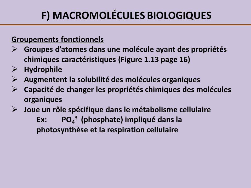 F) MACROMOLÉCULES BIOLOGIQUES Groupements fonctionnels Groupes datomes dans une molécule ayant des propriétés chimiques caractéristiques (Figure 1.13