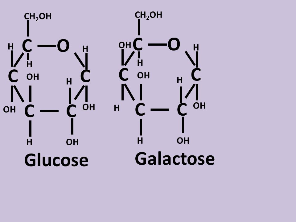C C CC C O OH H H H H H CH 2 OH OH Glucose C C CC C O OH H H H H CH 2 OH H OH Galactose