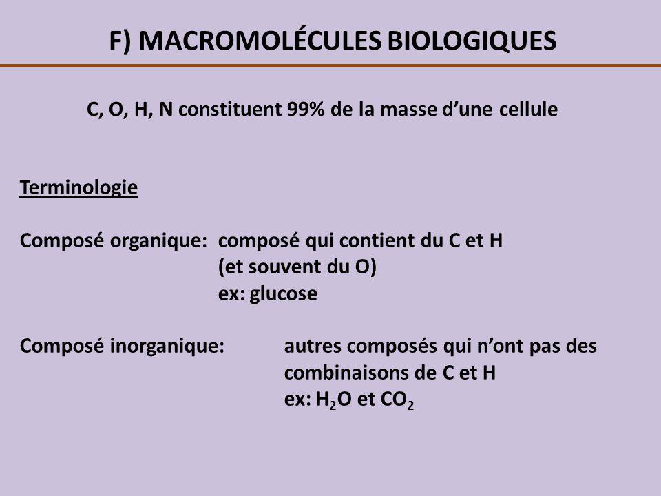 F) MACROMOLÉCULES BIOLOGIQUES C, O, H, N constituent 99% de la masse dune cellule Terminologie Composé organique: composé qui contient du C et H (et s
