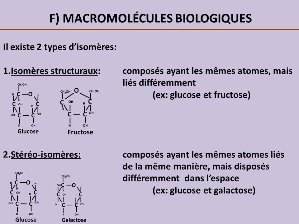 F) MACROMOLÉCULES BIOLOGIQUES Il existe 2 types disomères: 1.Isomères structuraux:composés ayant les mêmes atomes, mais liés différemment (ex: glucose