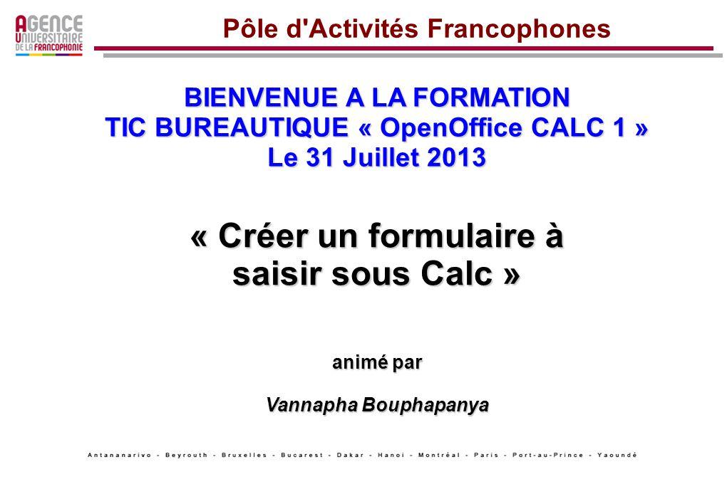 BIENVENUE A LA FORMATION TIC BUREAUTIQUE « OpenOffice CALC 1 » Le 31 Juillet 2013 « Créer un formulaire à saisir sous Calc » animé par Vannapha Boupha