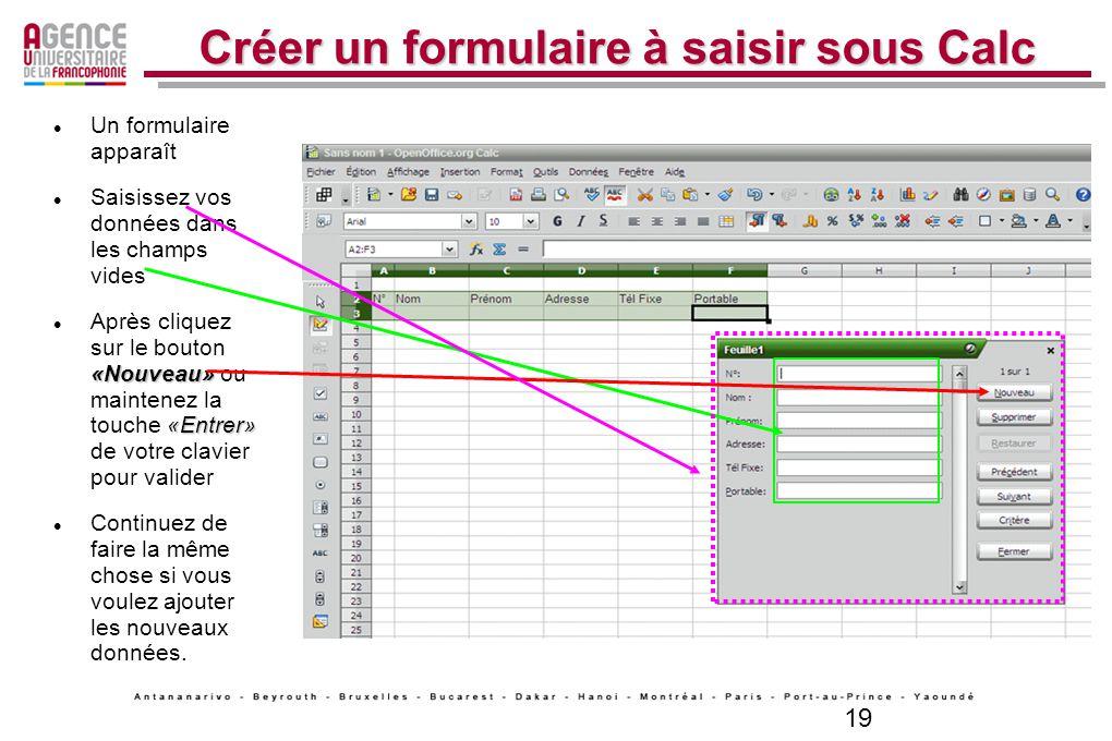 19 Créer un formulaire à saisir sous Calc Un formulaire apparaît Saisissez vos données dans les champs vides «Nouveau» «Entrer» Après cliquez sur le b