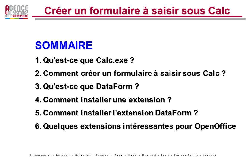 Créer un formulaire à saisir sous Calc SOMMAIRE 1.Qu'est-ce que Calc.exe ? 2.Comment créer un formulaire à saisir sous Calc ? 3.Qu'est-ce que DataForm