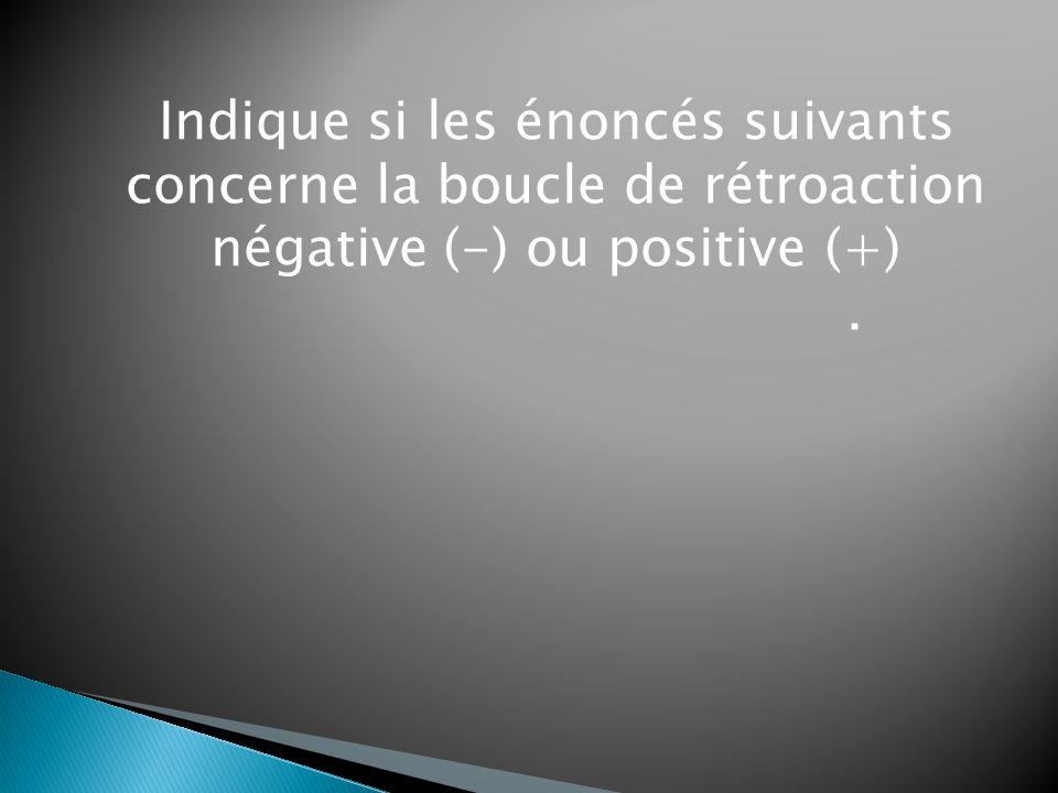 Indique si les énoncés suivants concerne la boucle de rétroaction négative (-) ou positive (+).