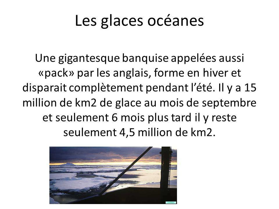 Les glaces océanes Une gigantesque banquise appelées aussi «pack» par les anglais, forme en hiver et disparait complètement pendant lété. Il y a 15 mi