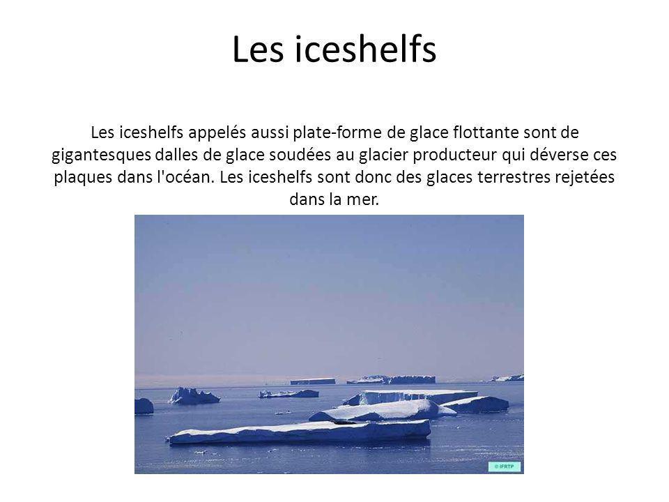Les iceshelfs Les iceshelfs appelés aussi plate-forme de glace flottante sont de gigantesques dalles de glace soudées au glacier producteur qui dévers