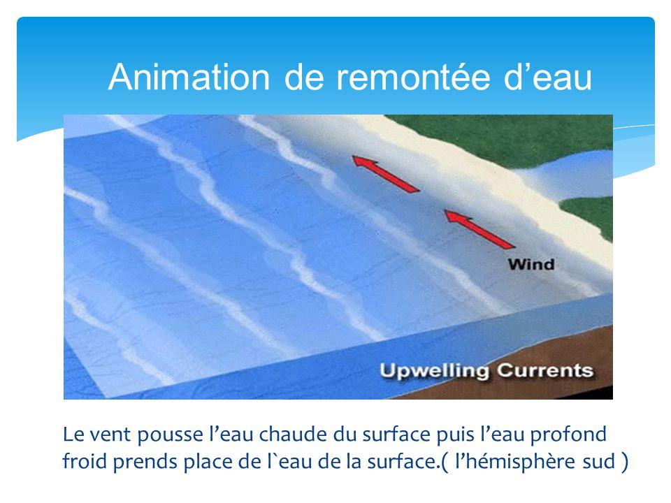 Le vent pousse leau chaude du surface puis leau profond froid prends place de l`eau de la surface.( lhémisphère sud ) Animation de remontée deau