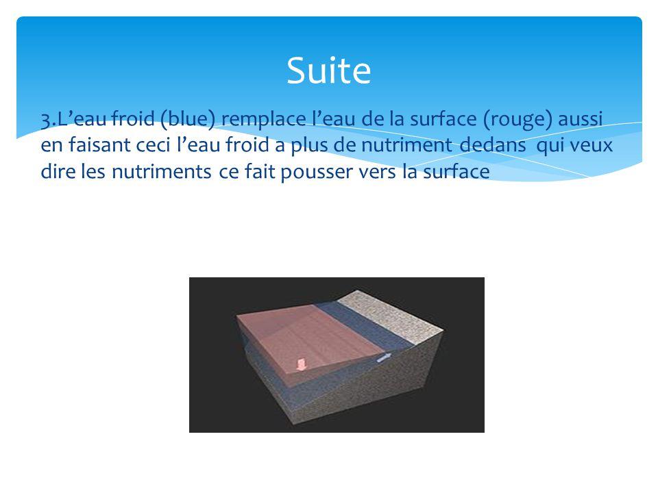 3.Leau froid (blue) remplace leau de la surface (rouge) aussi en faisant ceci leau froid a plus de nutriment dedans qui veux dire les nutriments ce fa