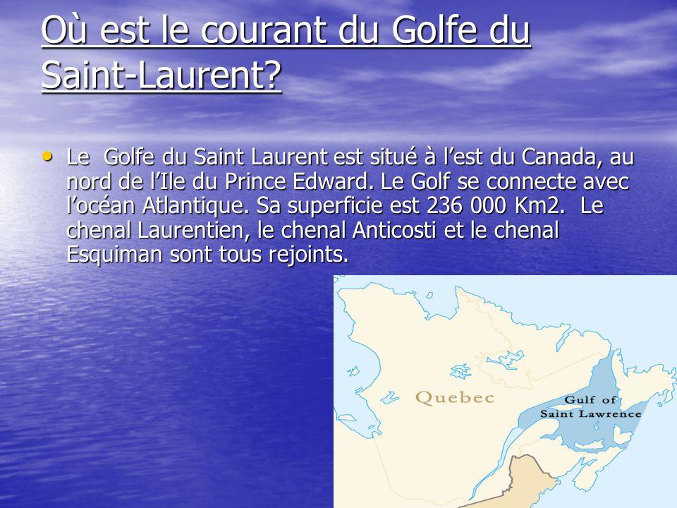 Où est le courant du Golfe du Saint-Laurent? Le Golfe du Saint Laurent est situé à lest du Canada, au nord de lIle du Prince Edward. Le Golf se connec