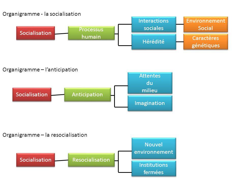 Organigramme - la socialisation Socialisation Processus humain Interactions sociales Interactions sociales Hérédité Environnement Social Environnement
