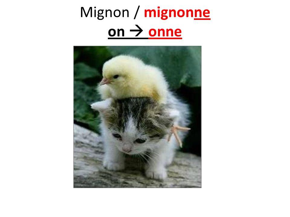 Mignon / mignonne on onne