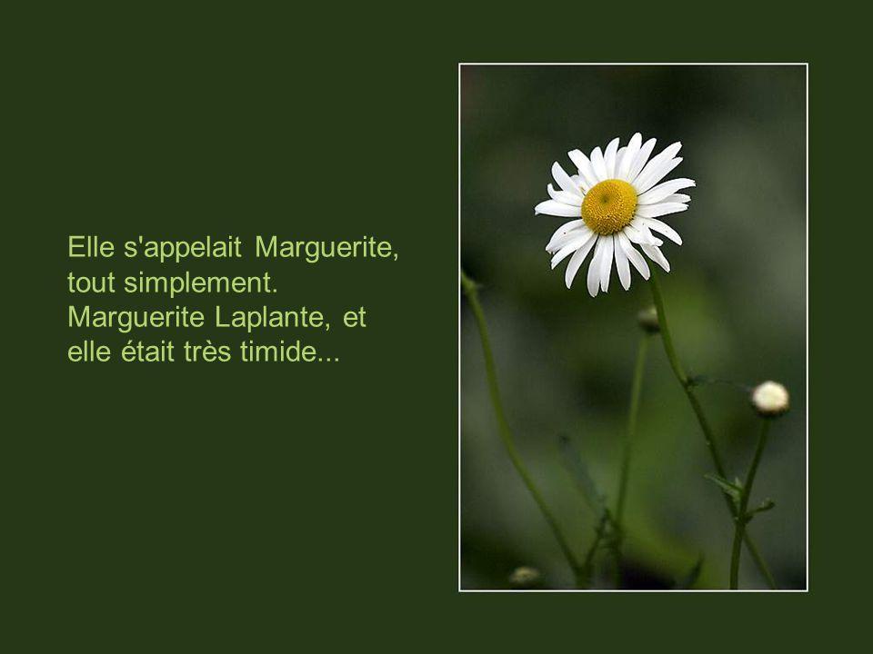 Elle s appelait Marguerite, tout simplement. Marguerite Laplante, et elle était très timide...