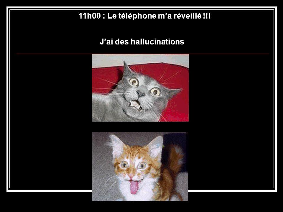 11h00 : Le téléphone ma réveillé !!! Jai des hallucinations