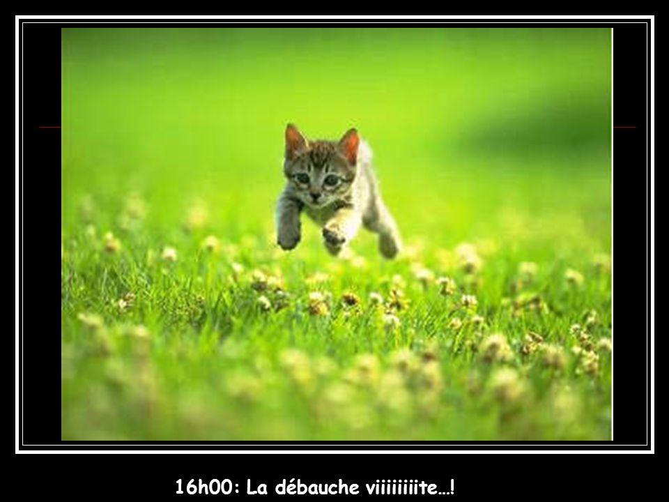 16h00: La débauche viiiiiiiite…!