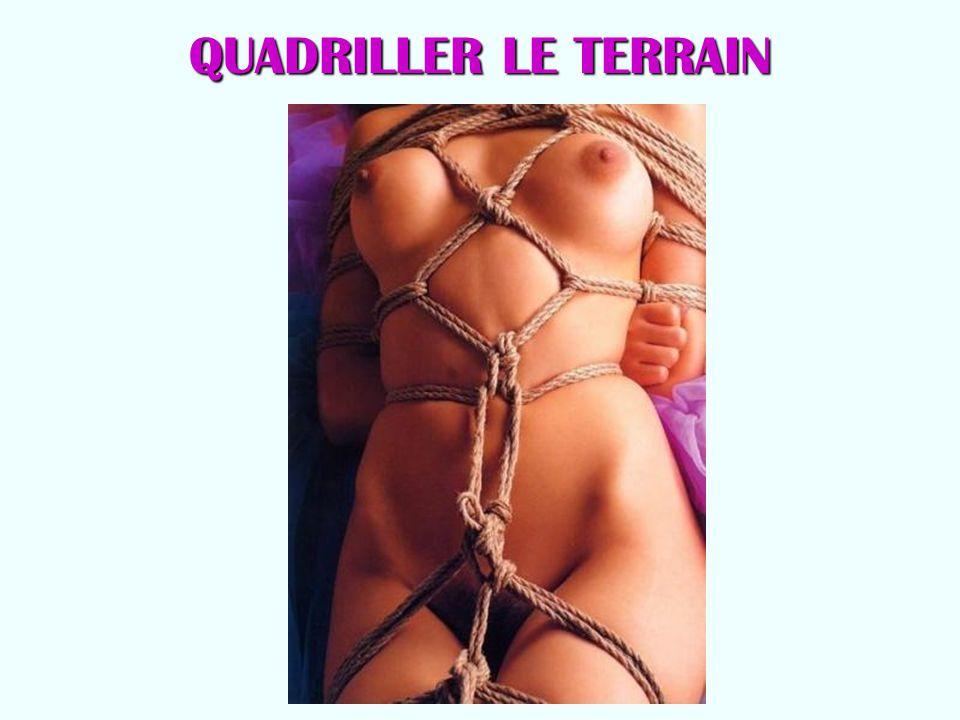 QUADRILLER LE TERRAIN