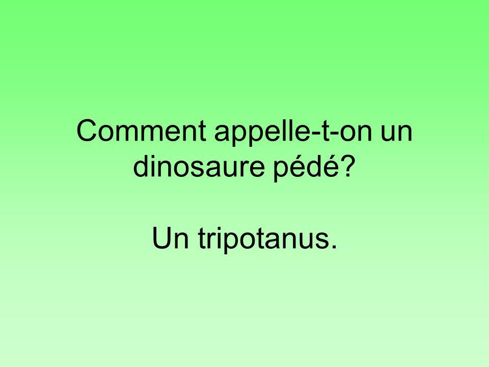 Comment appelle-t-on un dinosaure pédé? Un tripotanus.