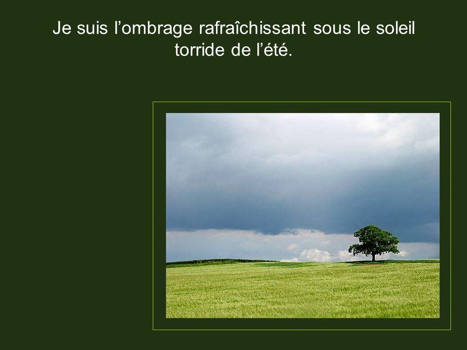 Alors prends bien soin de ta forêt !!!