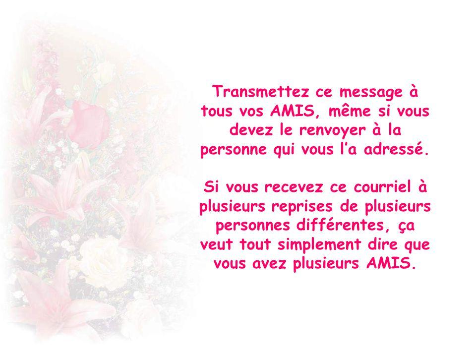Transmettez ce message à tous vos AMIS, même si vous devez le renvoyer à la personne qui vous la adressé.