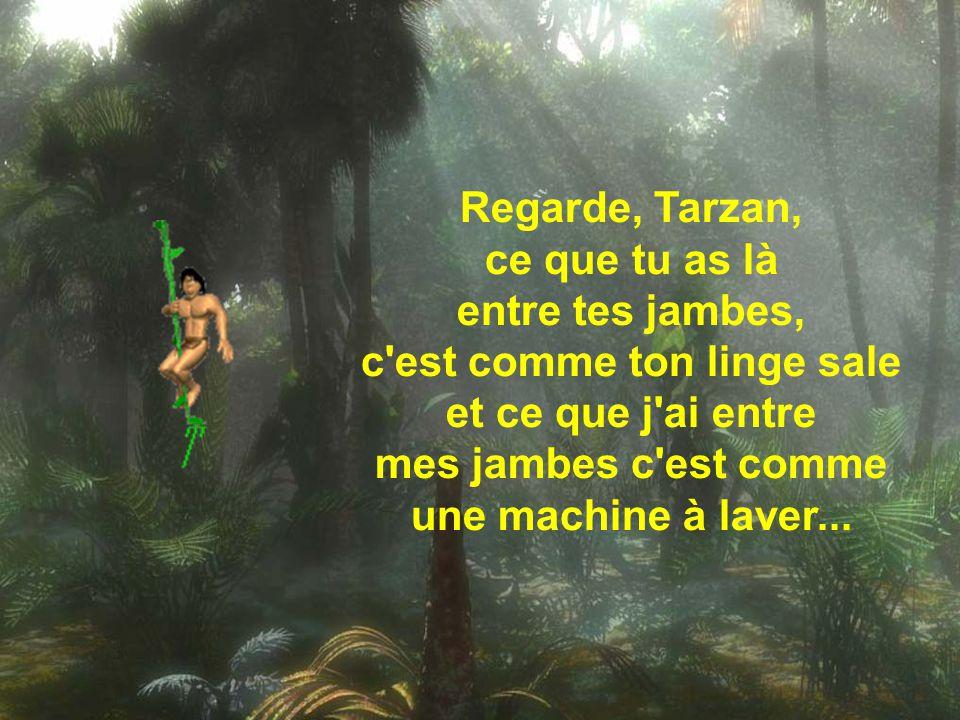 Regarde, Tarzan, ce que tu as là entre tes jambes, c est comme ton linge sale et ce que j ai entre mes jambes c est comme une machine à laver...