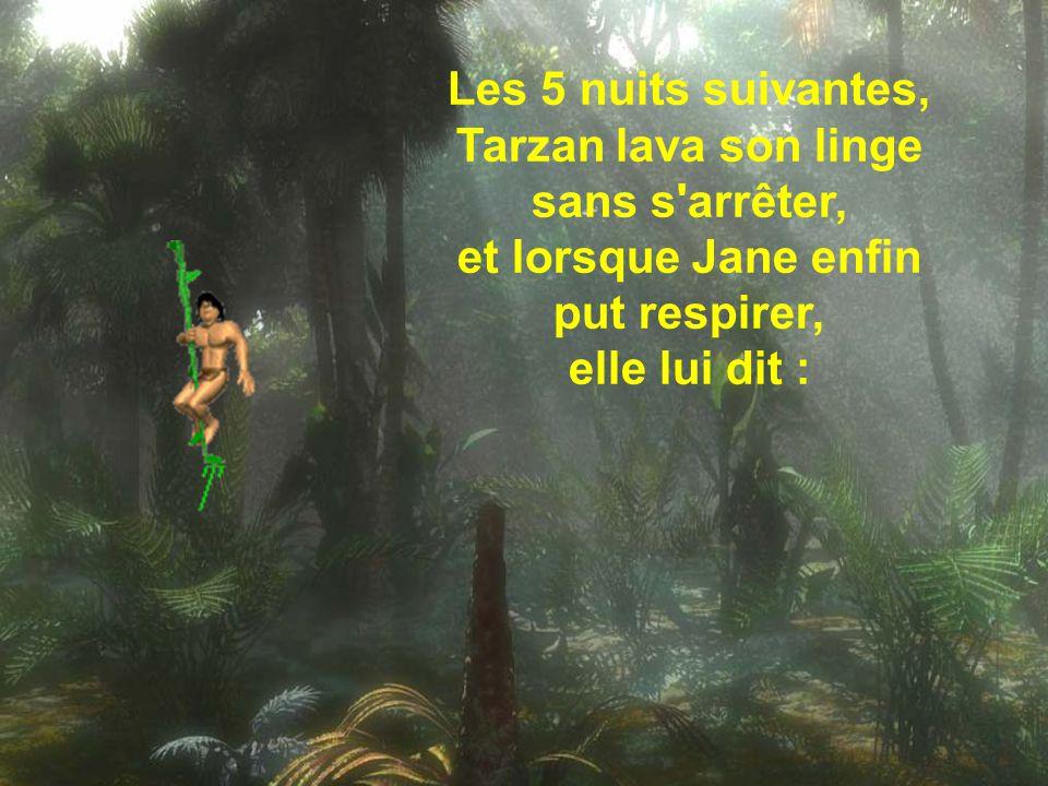 Les 5 nuits suivantes, Tarzan lava son linge sans s arrêter, et lorsque Jane enfin put respirer, elle lui dit :