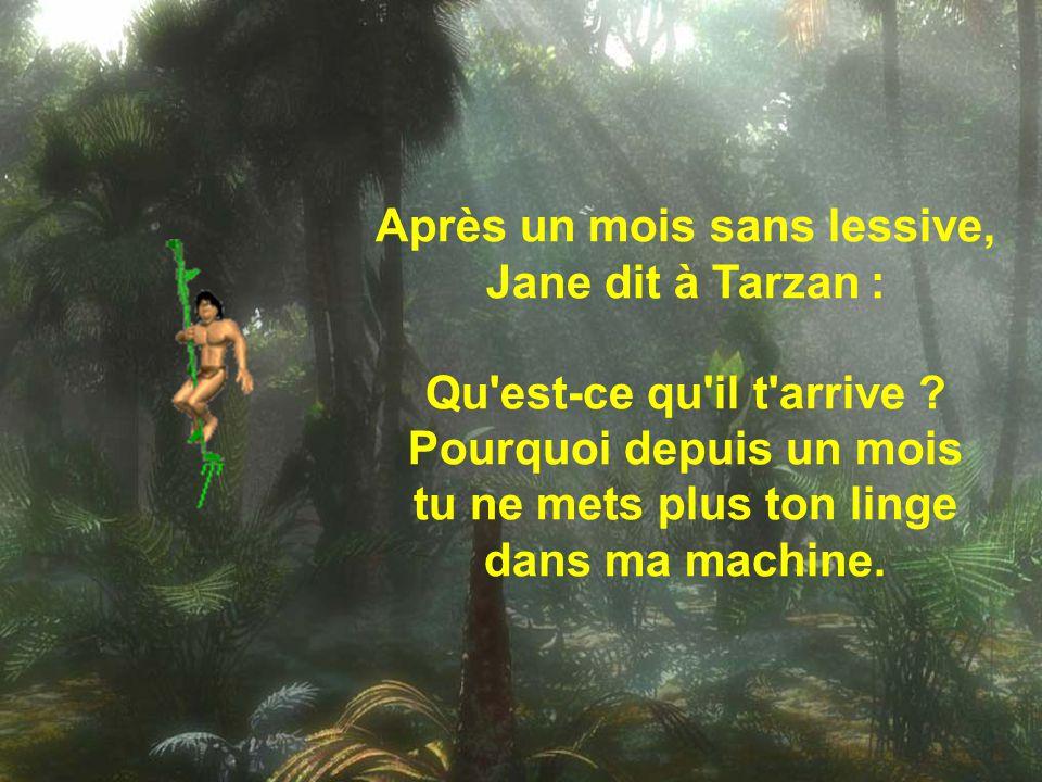 Après un mois sans lessive, Jane dit à Tarzan : Qu est-ce qu il t arrive .