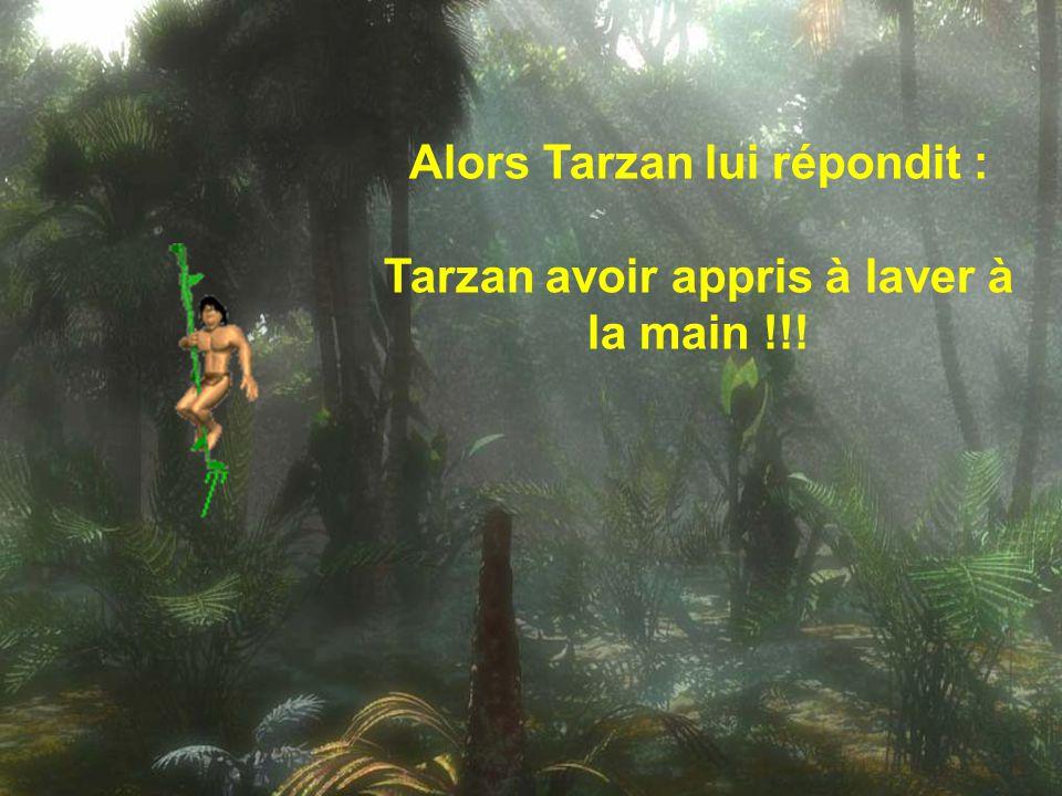 Après un mois sans lessive, Jane dit à Tarzan : Qu'est-ce qu'il t'arrive ? Pourquoi depuis un mois tu ne mets plus ton linge dans ma machine.