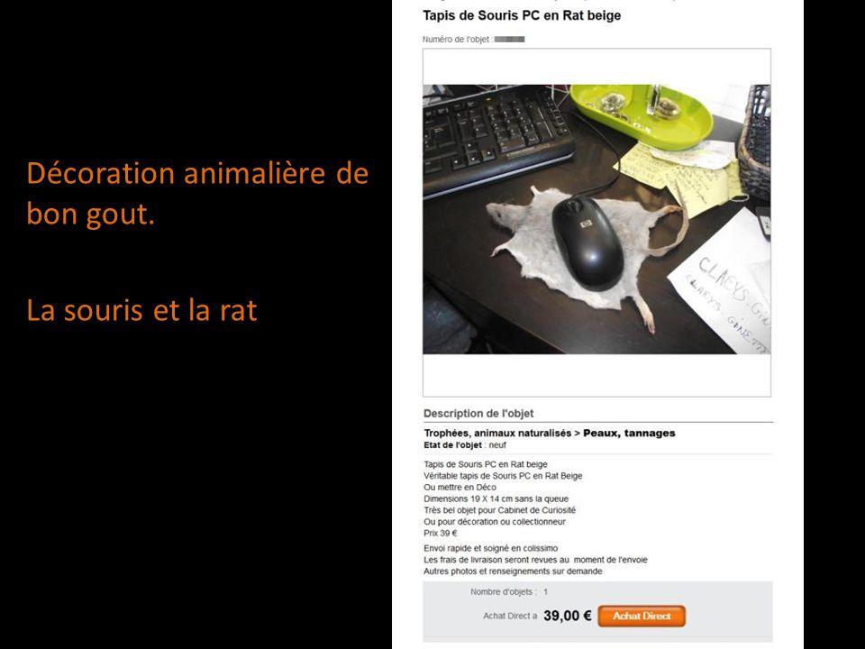 Décoration animalière de bon gout. La souris et la rat