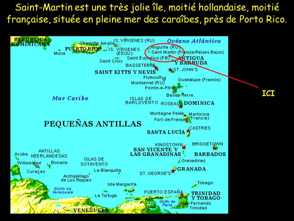 Saint-Martin est une très jolie île, moitié hollandaise, moitié française, située en pleine mer des caraîbes, près de Porto Rico. ICI