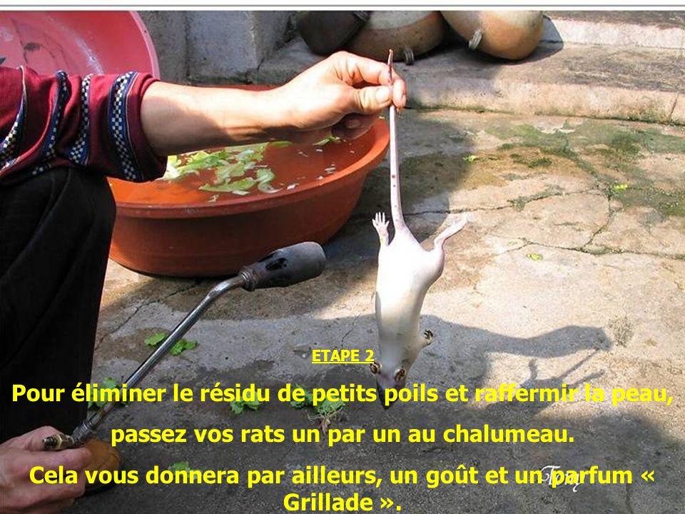 ETAPE 1 Après avoir enlevé à leau bouillante les poils de vos rats fraîchement chassés, lavez les à leau froide.