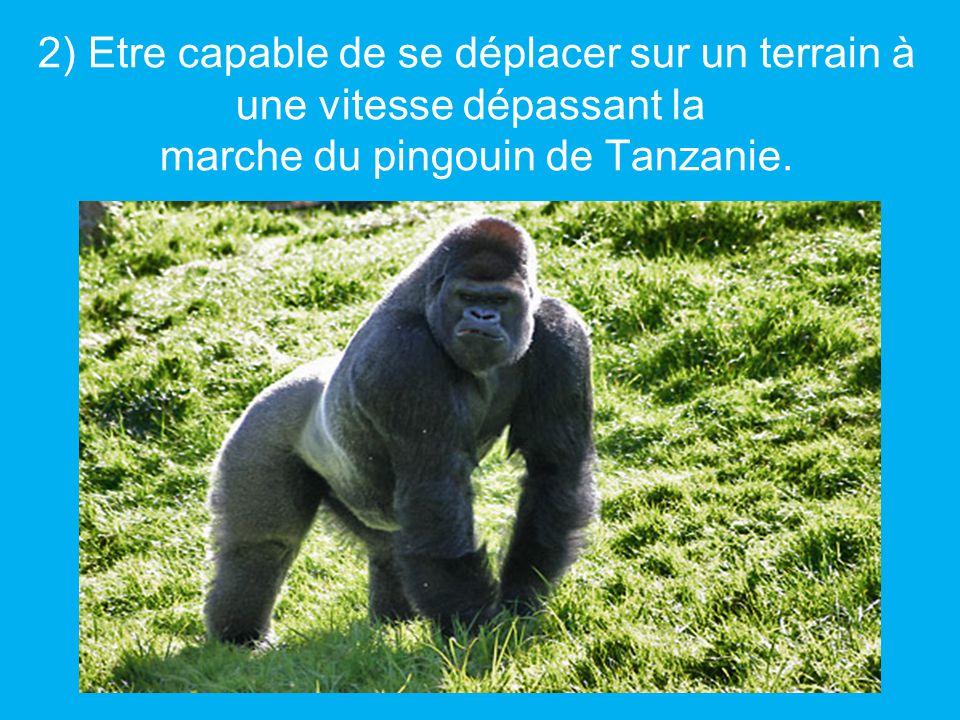 2) Etre capable de se déplacer sur un terrain à une vitesse dépassant la marche du pingouin de Tanzanie.