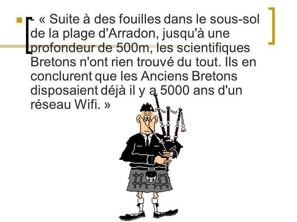 - « Suite à des fouilles dans le sous-sol de la plage d'Arradon, jusqu'à une profondeur de 500m, les scientifiques Bretons n'ont rien trouvé du tout.