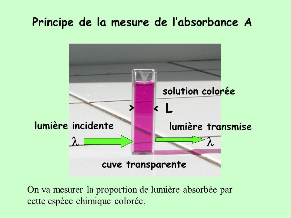Le permanganate absorbe principalement dans le vert = 540 nm