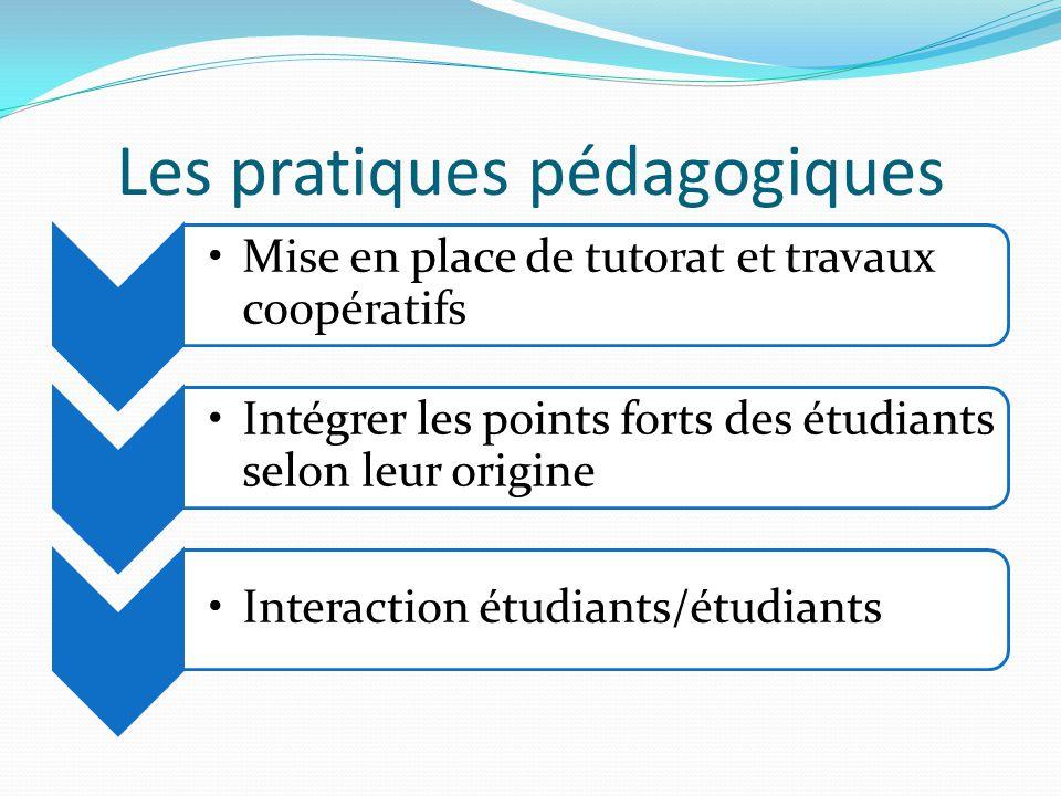 Les pratiques pédagogiques Mise en place de tutorat et travaux coopératifs Intégrer les points forts des étudiants selon leur origine Interaction étud