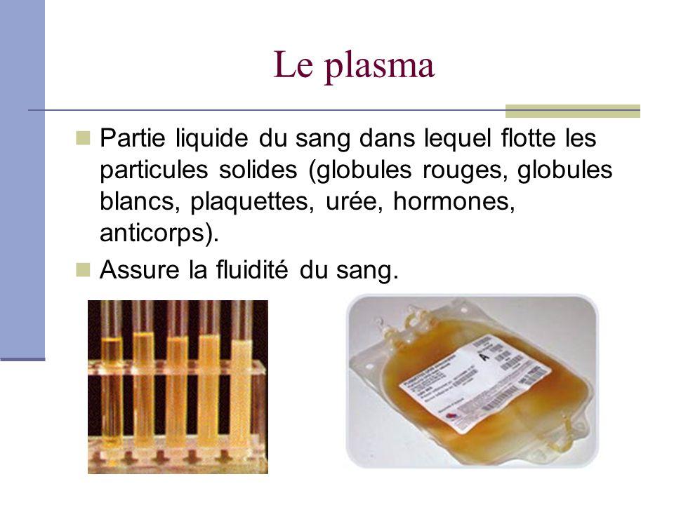 Les globules rouges (hématies ou érythrocytes) 7 à 9 µm (10 -6 m) 0,000007m µm= micromètre Un homme possède environ 5 200 000 hématies par µl et une femme 4 700 000 La durée de vie dun globule est de 120 jours (rate et foie les éliminent) Sont fabriqués par la moelle rouge (2,4 millions de globules rouges sont produits à la seconde) Transportent O 2 des poumons vers les organes et le CO 2 des organes vers les poumons..