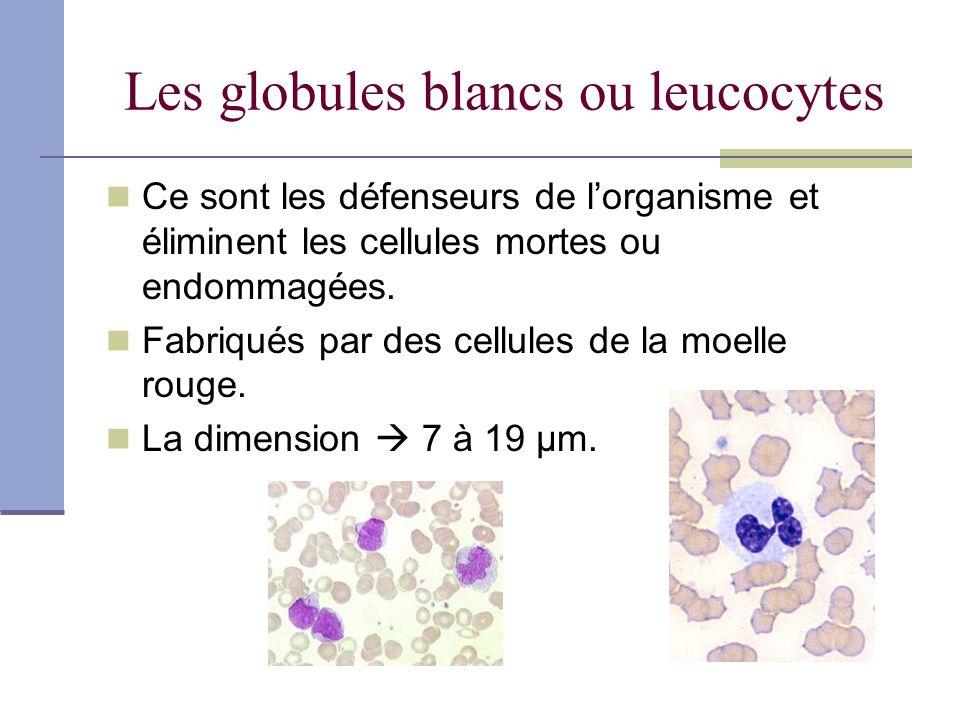 Les plaquettes sanguines ou thrombocytes Parties de cellules géantes Mesure entre 2 et 4 µm Durée de vie 10 jours Essentielles à la coagulation sanguine Coagulation: transformer un liquide organique en une masse solide.