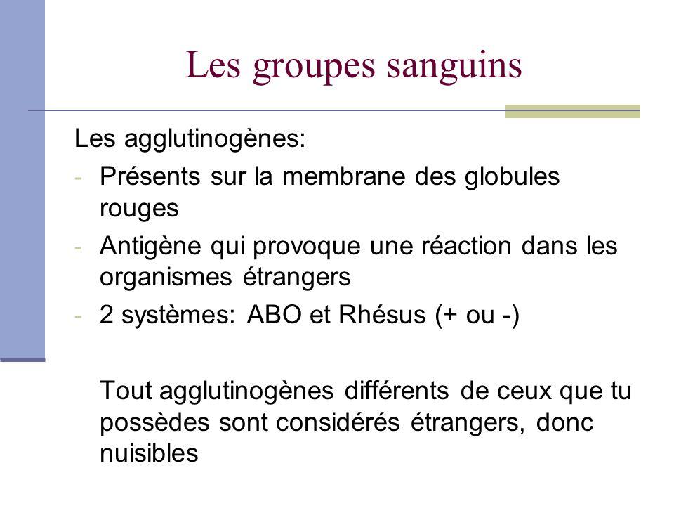 Les agglutinines Présents dans le plasma Anticorps pour contrer les agglutinogènes quil ne possède pas 3 types: Anti-A, Anti-B et Anti-Rh