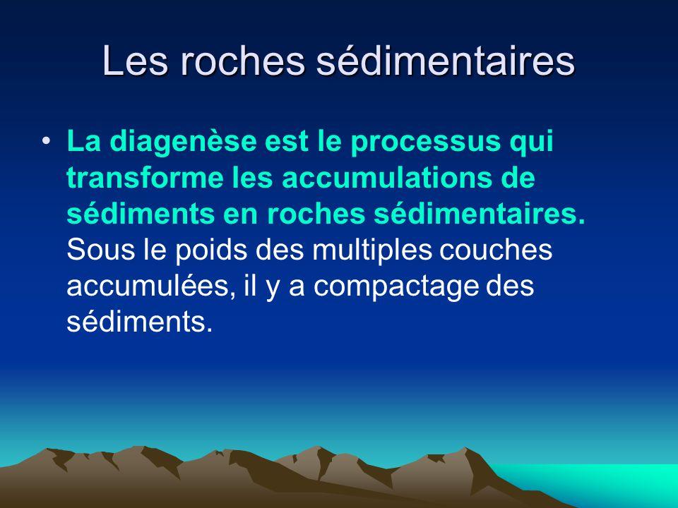 Les roches sédimentaires La diagenèse est le processus qui transforme les accumulations de sédiments en roches sédimentaires. Sous le poids des multip