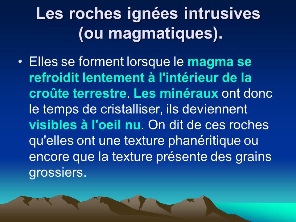 Les roches ignées intrusives (ou magmatiques). Elles se forment lorsque le magma se refroidit lentement à l'intérieur de la croûte terrestre. Les miné